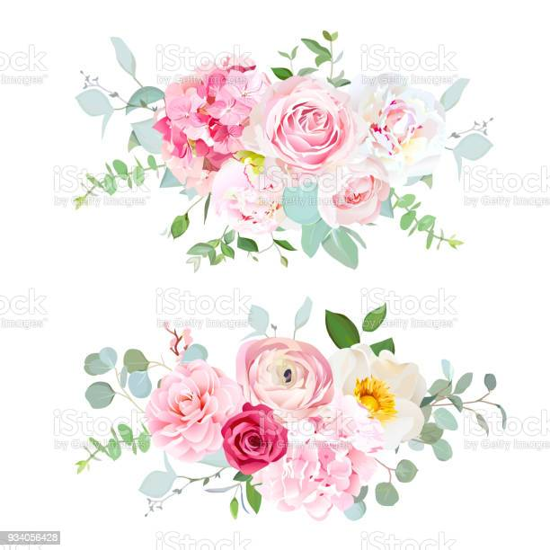 Pink hydrangea red rose white peony camellia ranunculus euc vector id934056428?b=1&k=6&m=934056428&s=612x612&h=naox4 a7iikojumqvcvq85emgktieydzxgsdf4zypcg=