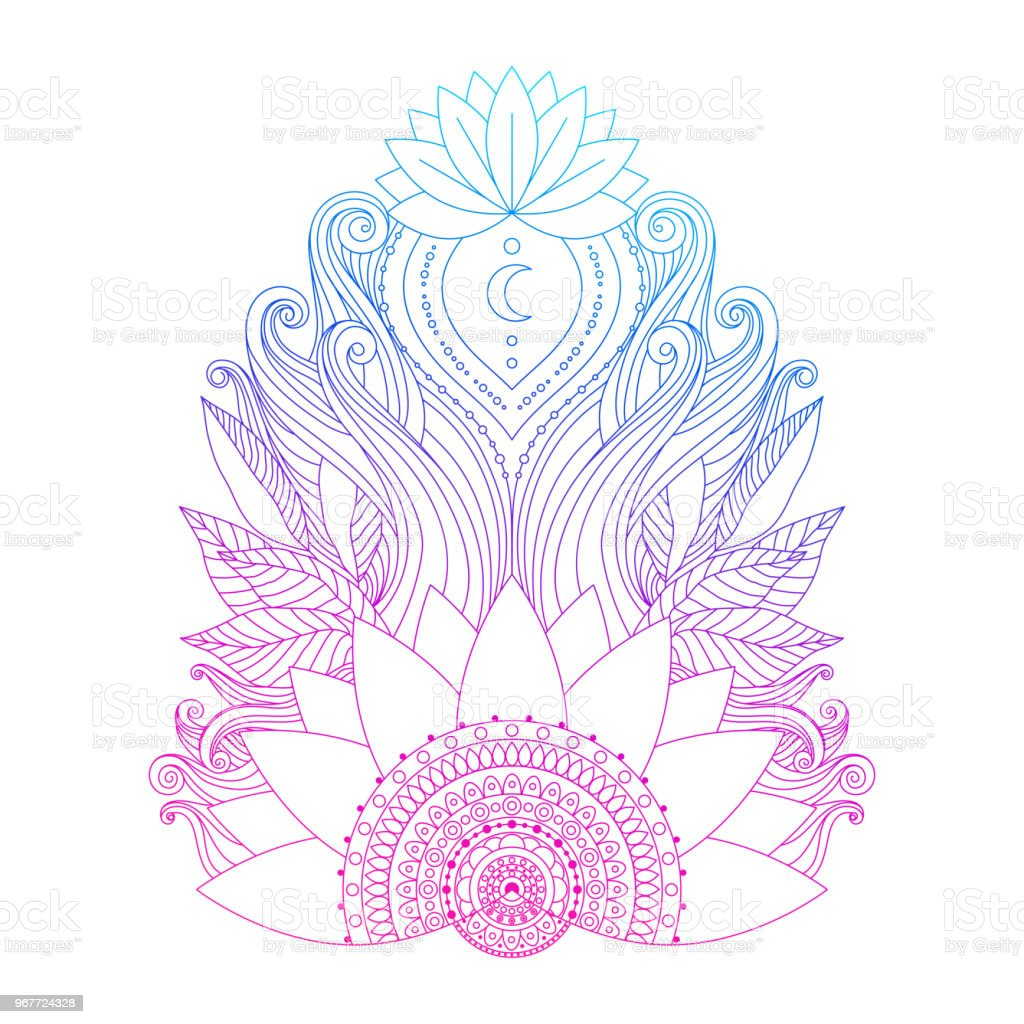 Pink Lotus Flower Isolated Stock Illustration Download Image Now Istock