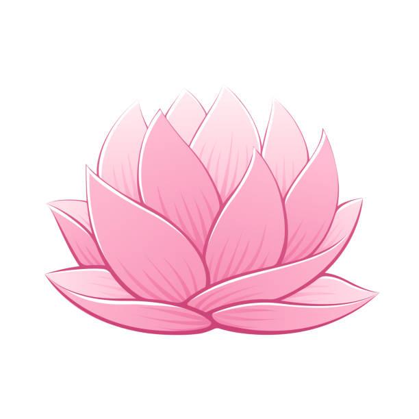 ilustrações, clipart, desenhos animados e ícones de rosa flor de lótus  - lotus