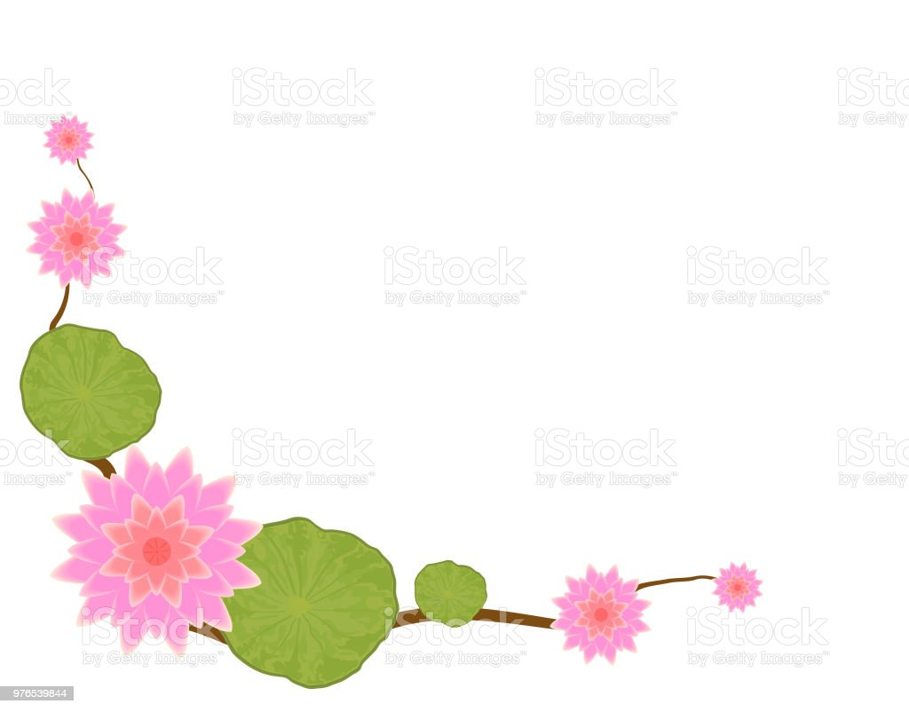 Pink Lotus Flower With Green Leaf On White Background Decorated