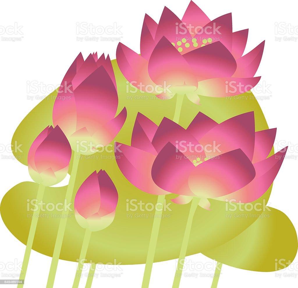 pink lotus lilies with leaves. floral vector illustration elemen vector art illustration