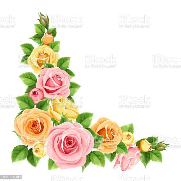 Pink orange and yellow roses vector corner background vector id1021136152?b=1&k=6&m=1021136152&s=612x612&h=agucf1zv8ld6gwpgzldqsxgjf9rwdmigdhvex nuwsc=