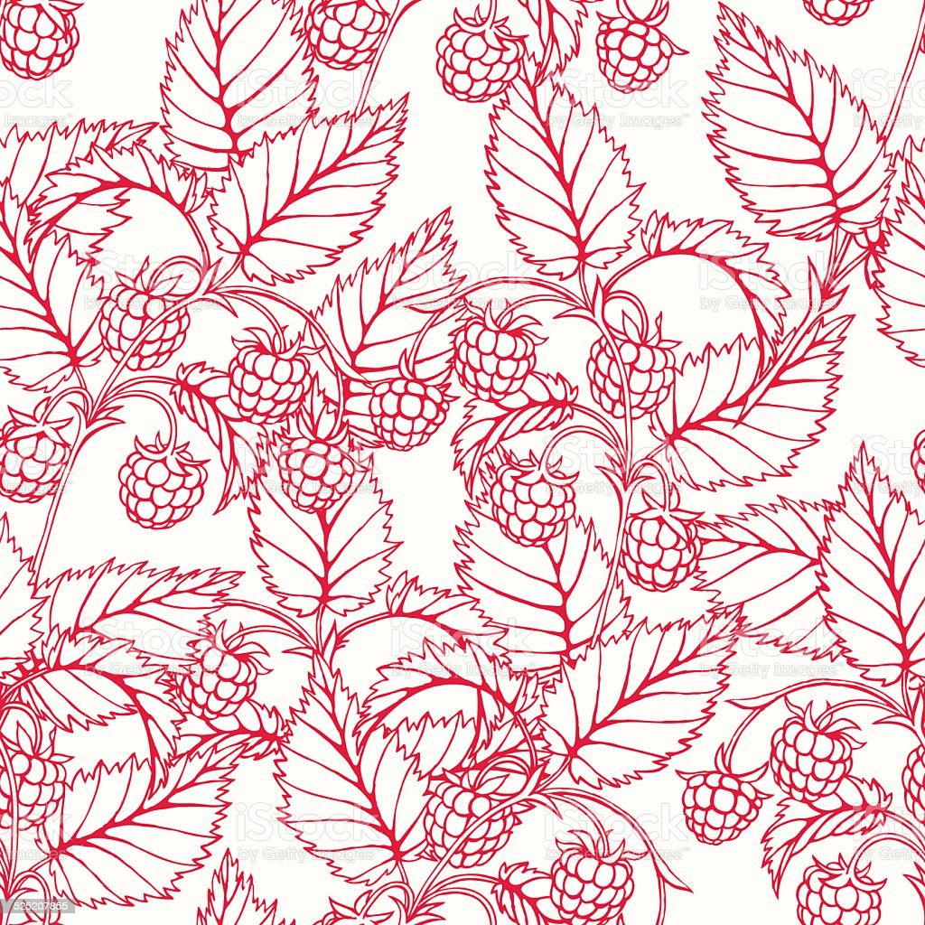 pink raspberry vector art illustration