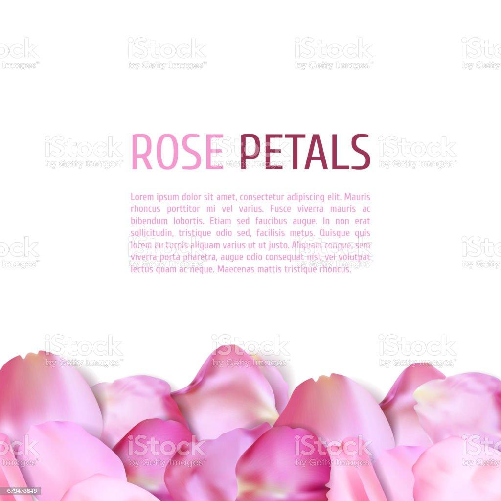 Pink Rose petals border 免版稅 pink rose petals border 向量插圖及更多 四大元素 圖片