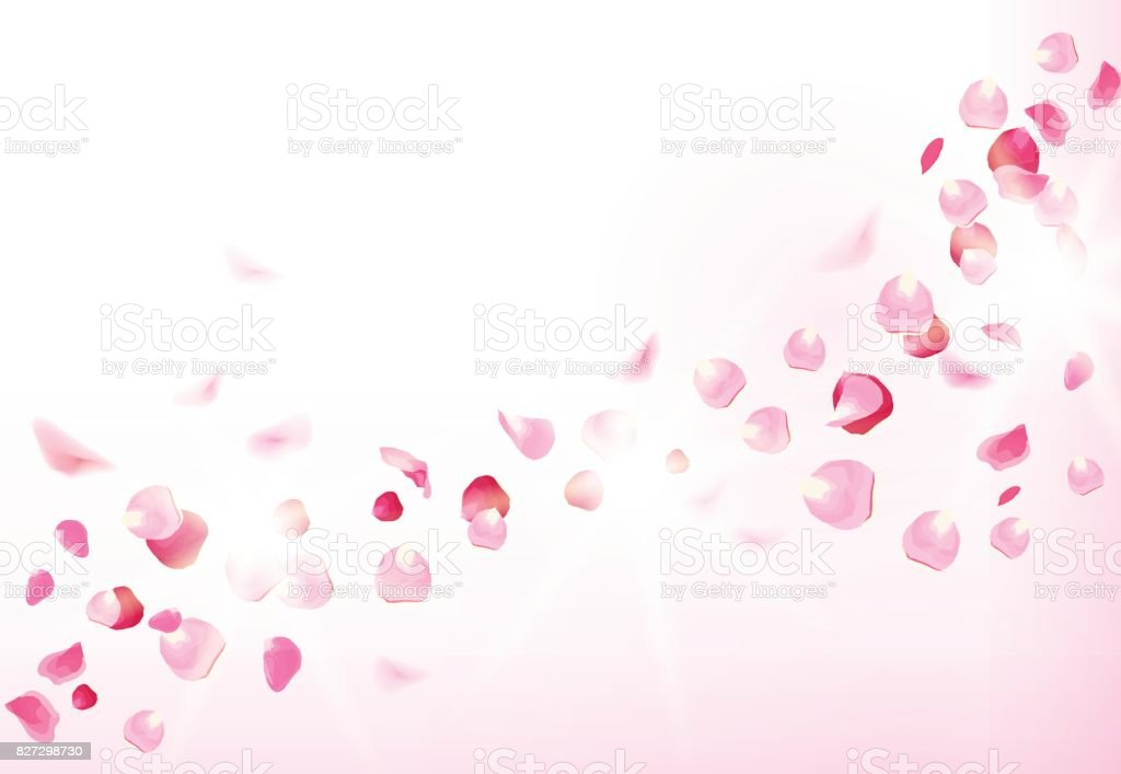 Pink rose petals is flying in the air with flares vector art illustration