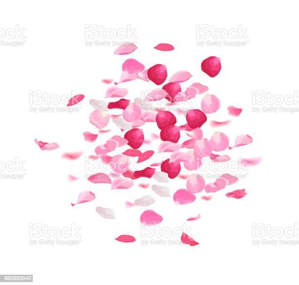 Pink rose petals pile vector design set vector id885983540?b=1&k=6&m=885983540&s=612x612&h=4rcsr1hdfgh9bdobkgfduvj7mctigrjbtoqmbrzqor4=
