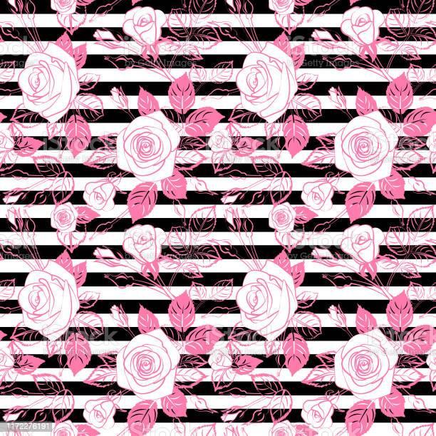 Pink roses on black on white stripes pattern seamless repeatable vector id1172276191?b=1&k=6&m=1172276191&s=612x612&h=x6nb03ybhifkjzpqrdl lkhzf52om8akngyevl3mxk8=