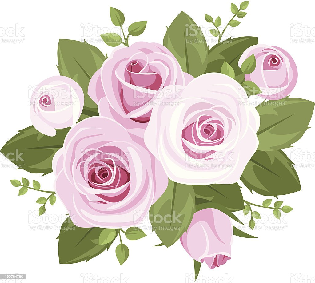 Pink roses, rosebuds and leaves. Vector illustration. royalty-free pink roses rosebuds and leaves vector illustration stock vector art & more images of beauty