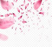 Pink sakura falling petals background. Vector illustration EPS10