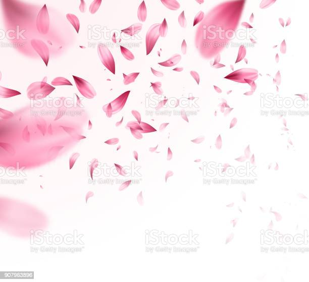 Pink sakura falling petals background vector illustration vector id907963896?b=1&k=6&m=907963896&s=612x612&h=i cay1xvym8g6kpfn mekumlj5p6ujw4xfpnm1 pvaa=