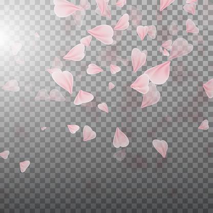 핑크 사쿠라 꽃잎 떨어지는 4월에 대한 스톡 벡터 아트 및 기타 이미지