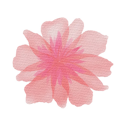 Pink Spring Blossom Background. Hand Painted Layered Watercolor Flower Clip Art. Watercolor Floral Pattern. Design Element for Greeting Cards and Wedding, Birthday and other Holiday and Summer Invitation Cards Background.
