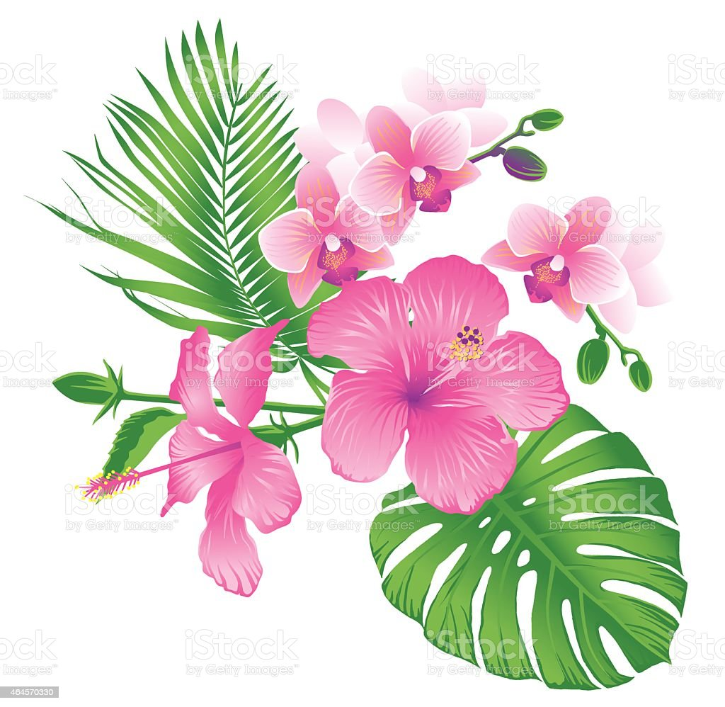 Pink tropical flowers stock vector art more images of 2015 pink tropical flowers royalty free pink tropical flowers stock vector art amp more images mightylinksfo Images