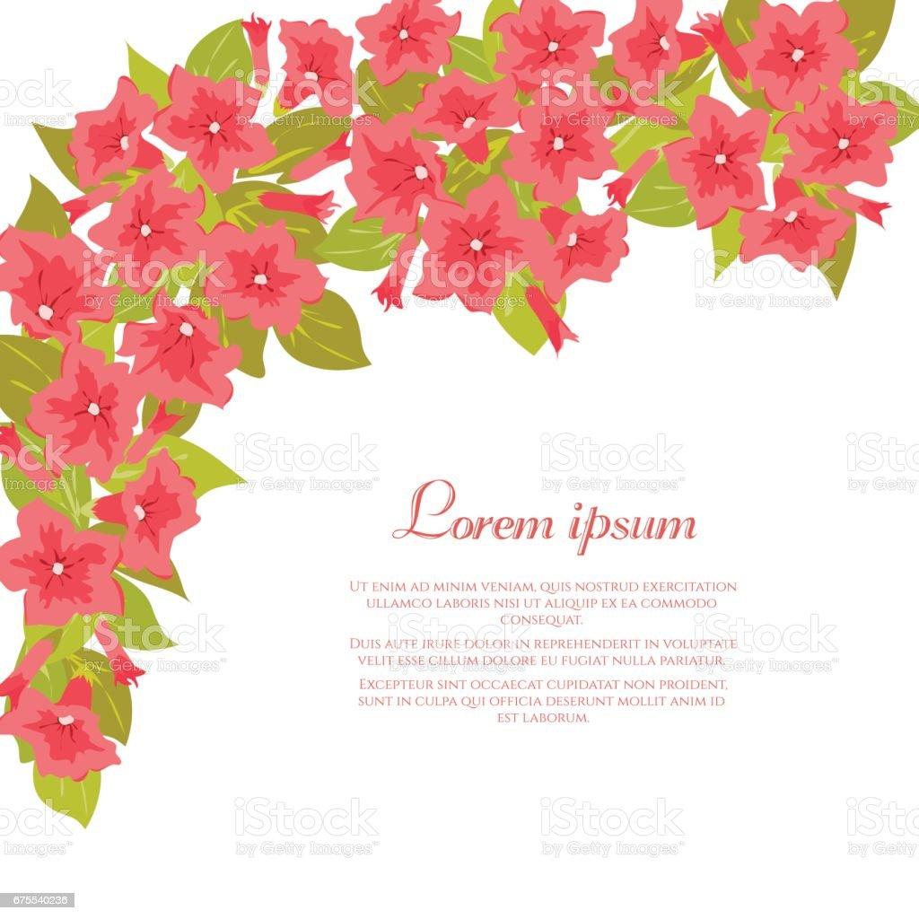 Pink Vintage Flowers Around White Background For Wedding