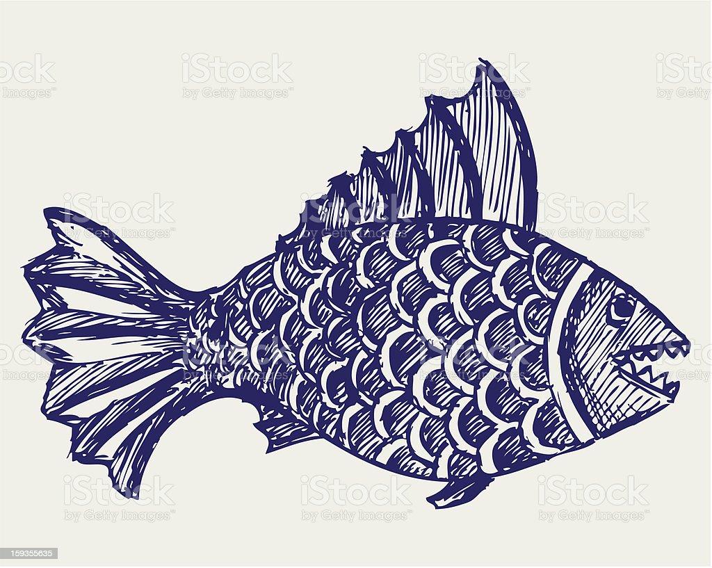 Piranha fish vector art illustration