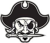 istock Pirate Head 165694918