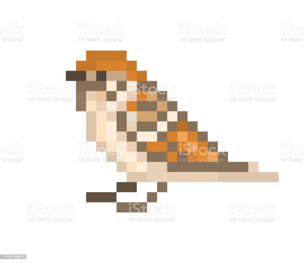 Pixel Art Sparrow Isolated On White Background 8 Bit Little Bird Icon Urban Wildlife Animal Cute Birdie Character Retro Vintage 80s 90s Slot Machinevideo Game Graphics Stock Illustration Download Image Now Istock