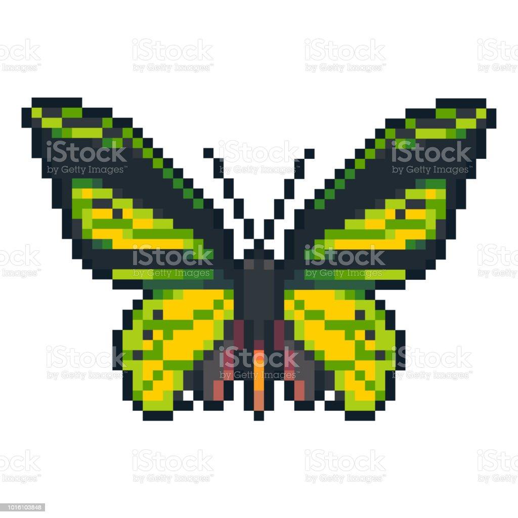 Pixel Art Vectoriel Euphorion Papillon Isolé Sur Fond Blanc