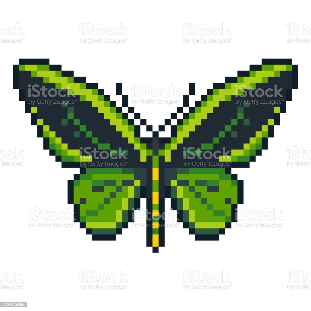 Pixel Art Vecteur Cap Euphorion Papillon Isolé Sur Fond