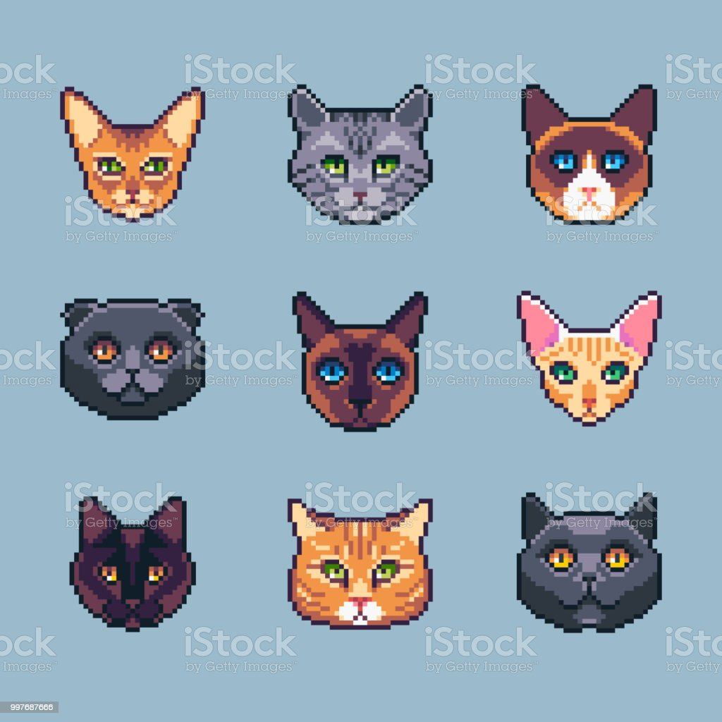 Pixel Art Vector Cat Breeds Icons Set Stock Illustration