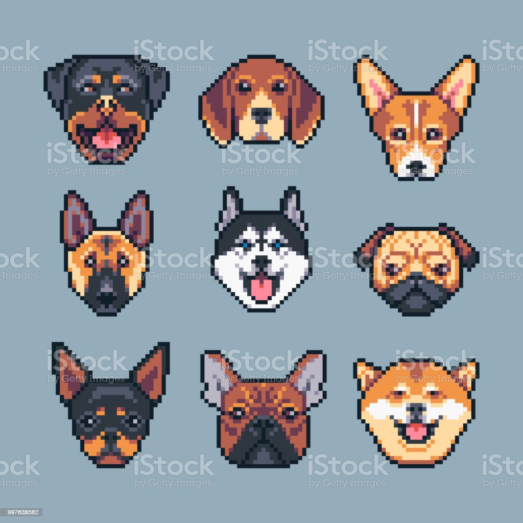 Pixel Art Vector Dogs Breeds Icons Set Stock Illustration
