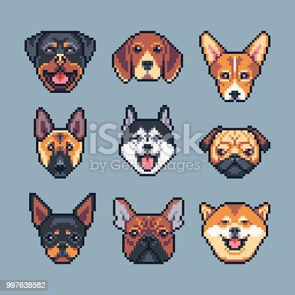 Pixel art vector dogs breeds icons set.