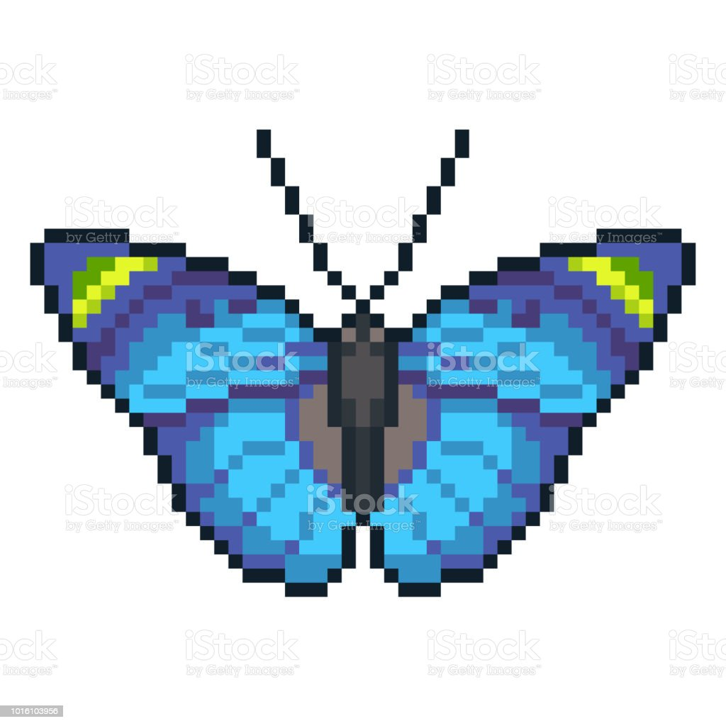 Pixel Art Vector Forester Butterfly Isolated On White
