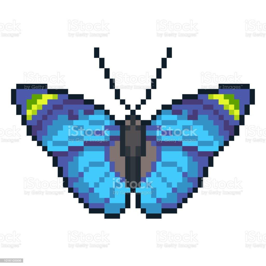 Pixel Art Vectoriel Forester Papillon Isolé Sur Fond Blanc