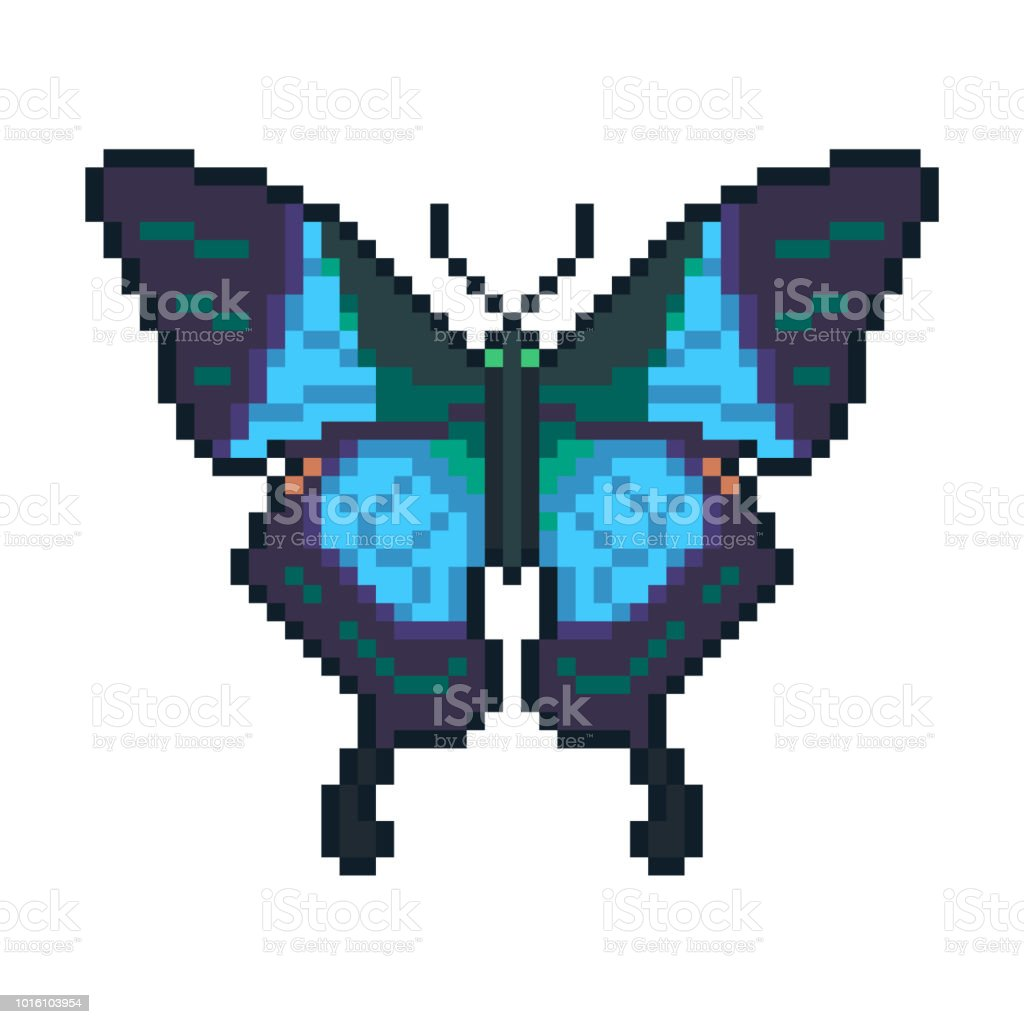 Pixel Art Vector Peacock Butterfly Isolated On White Background ...
