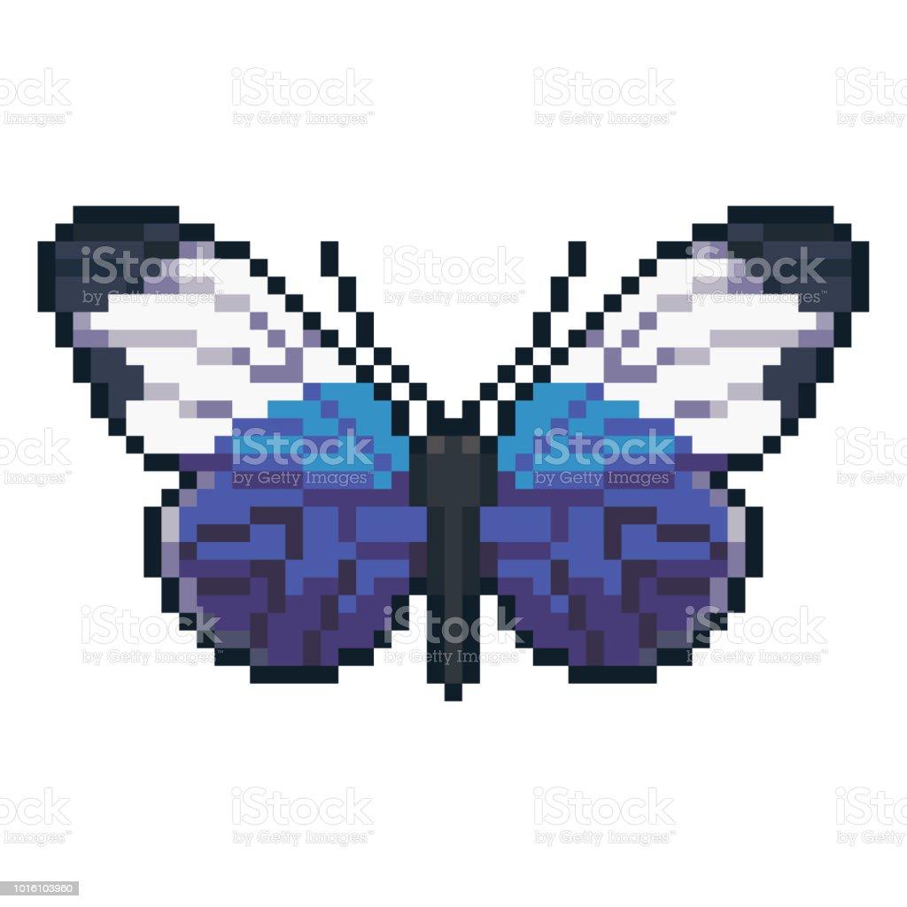 Pixel Art Vectoriel Sapho Heliconius Papillons Isolé Sur
