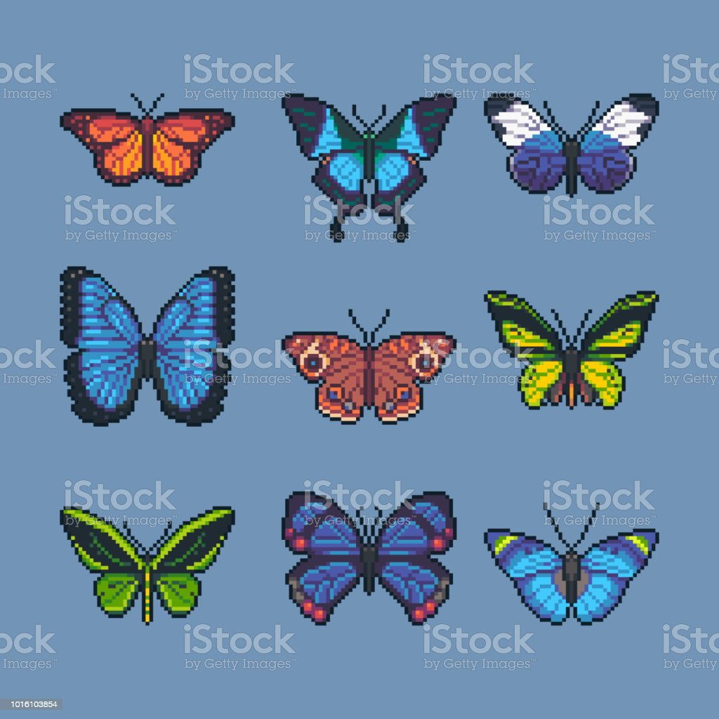 Pixel Art Vector Set Of Different Butterflies And Moth Stock