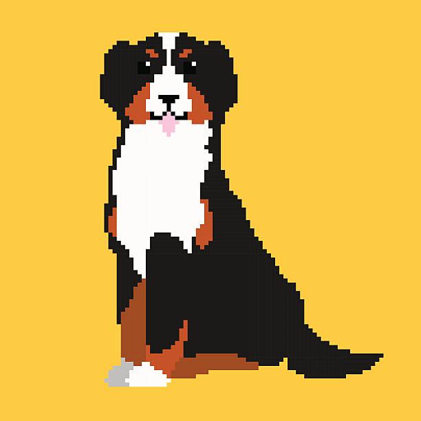Pixel Bernese Mountain Dog vector art illustration