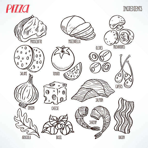 pizza sketch ingredients pizza sketch ingredients. bacon, greens, cheese, tomatoes. hand-drawn illustration mozzarella stock illustrations