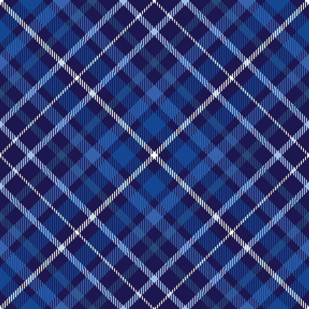 Plaid pattern in blue, navy and white. Allover fabric texture print. alba stock illustrations
