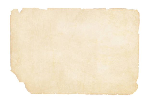 Plain  yellowish brown beige grunge paper background vector illustration Plain  yellowish brown beige grunge paper vector illustration. The edges and corners are torn and weathered. The bottom left corner is slightly more torn. Old paper. No text. No People. Copy space. ancient stock illustrations