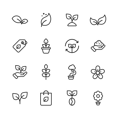 Plant and Seed Line Icons. Editable Stroke. Pixel Perfect. For Mobile and Web. Contains such icons as Plant, Seed, Leaf, Tree, Ecology, Environment, Agriculture, Planting, Growing, Watering, Recycling, Fertilizer, Soil, Flower, Gardening, Flowerpot.