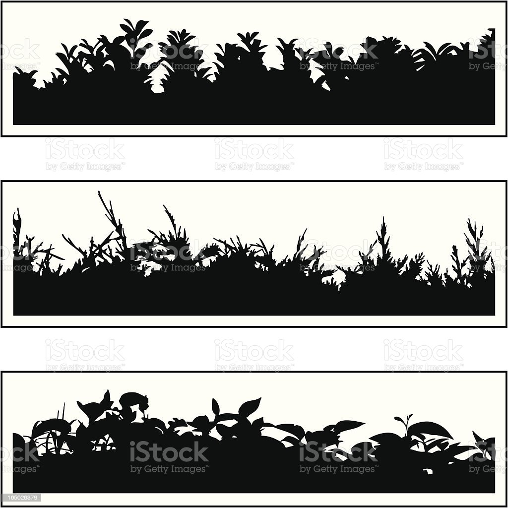Plant border 03 vector art illustration