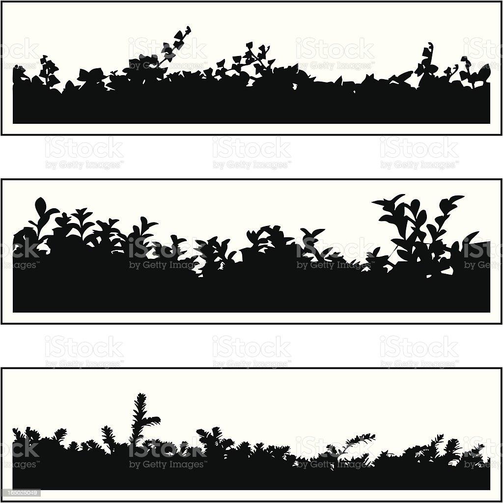 Plant border 05 vector art illustration