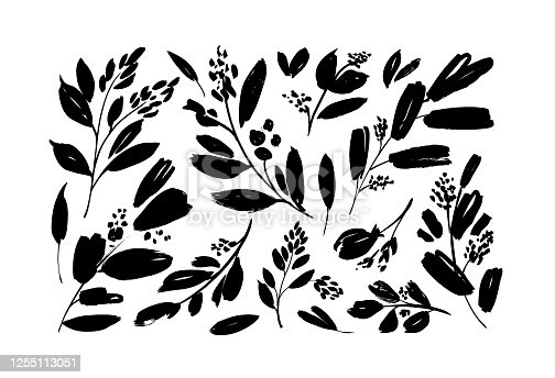 Plant branches with small leaves black paint vector illustrations set. Set of black silhouettes leaves and twigs. Hand drawn eucalyptus foliage, herbs, tree branches. Ink elements isolated on white.