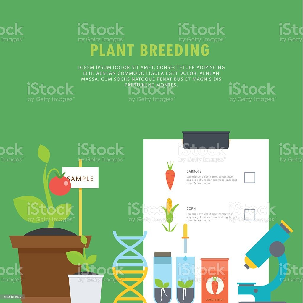 Plant breeding. Botanical concept with vials, seedlings, plants, a microscope vector art illustration