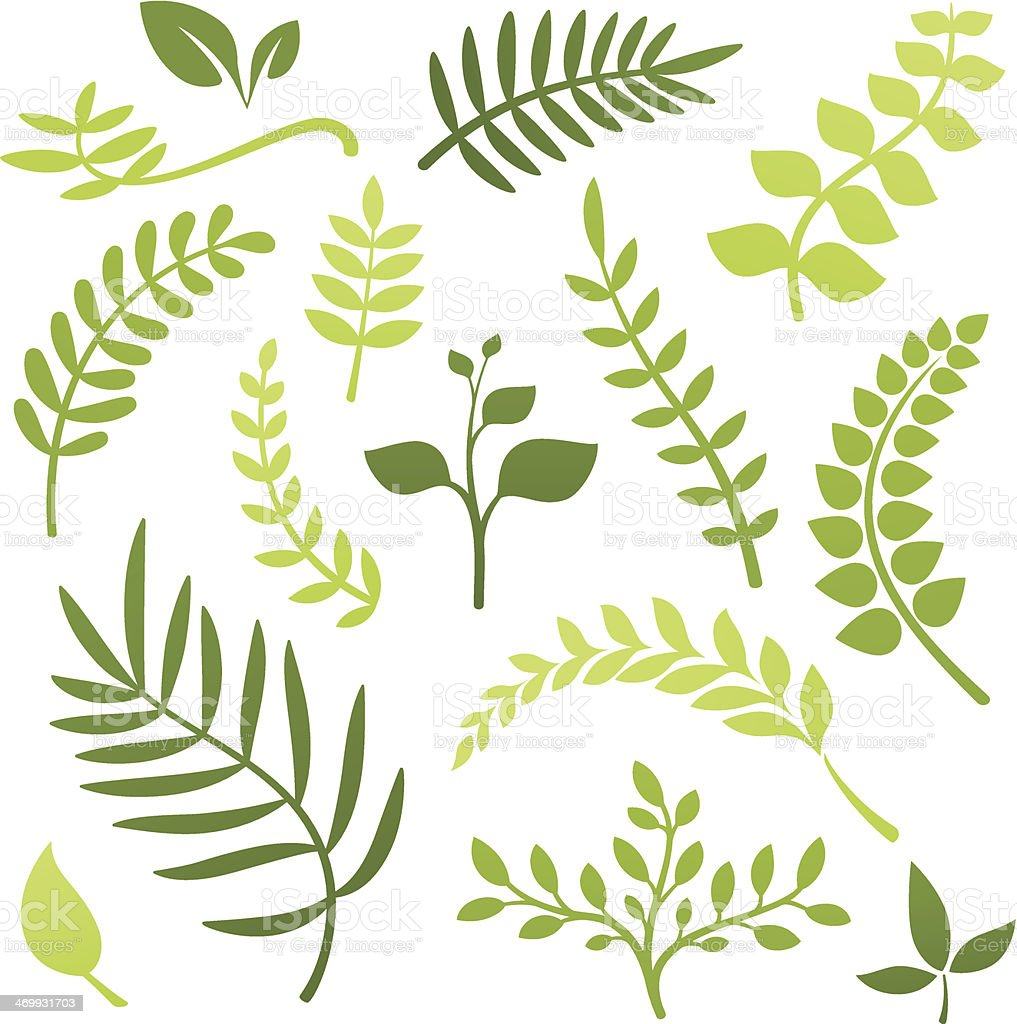 Plant Elements vector art illustration