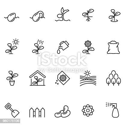 Plant growing icon set , vector illustration