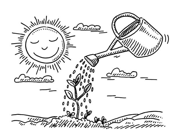 Plant Growth Watering Can Drawing Hand-drawn vector drawing of a Plant Growth Concept with a Watering Can and a Sun. Black-and-White sketch on a transparent background (.eps-file). Included files are EPS (v10) and Hi-Res JPG. environment stock illustrations