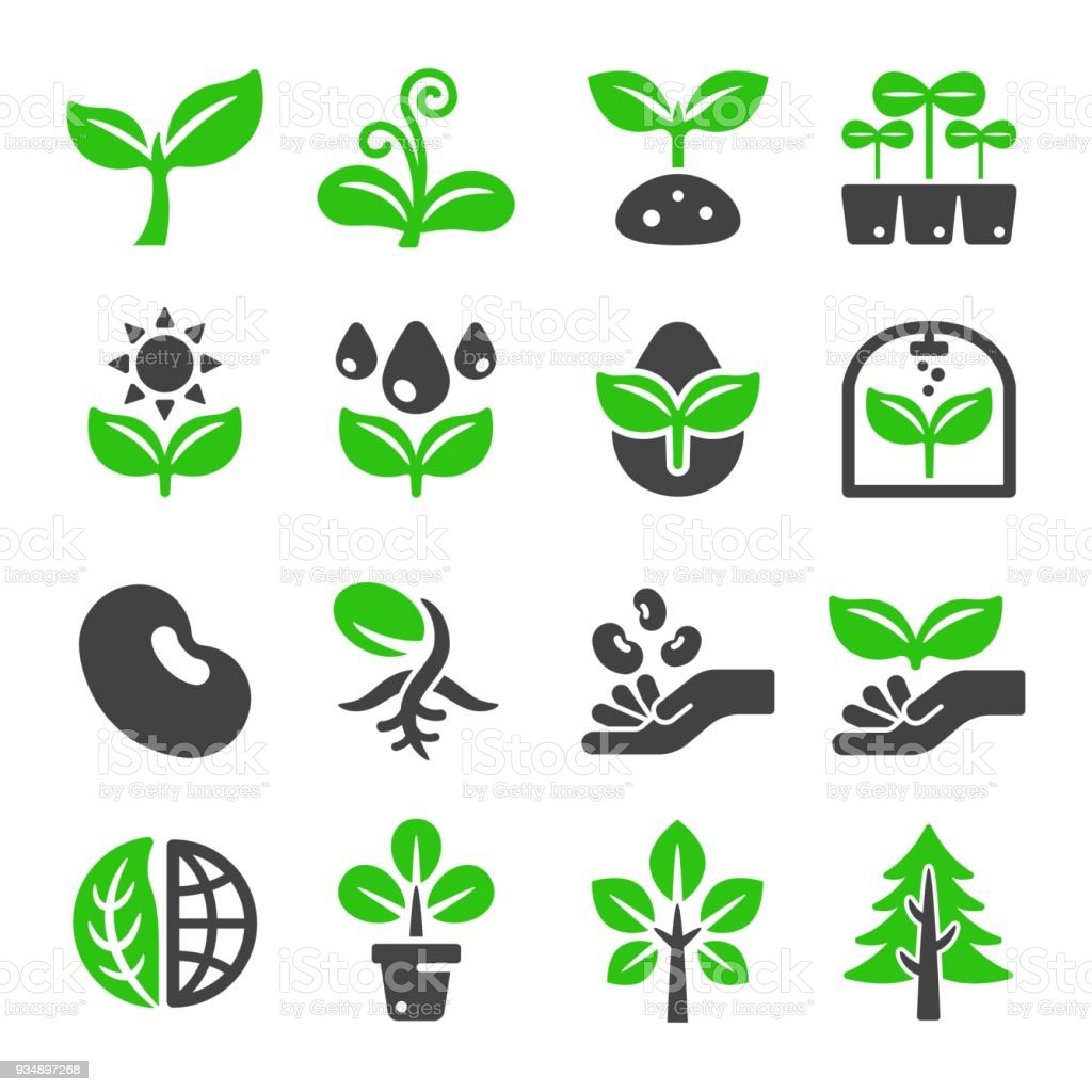 Plant Icon Stock Illustration Download Image Now Istock These can be used in website landing page, mobile app, graphic design projects. plant icon stock illustration download image now istock