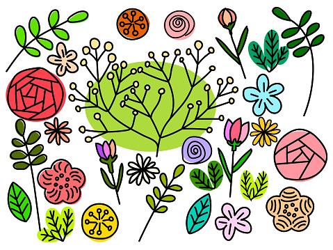 Plant Illustration Cut (Color)