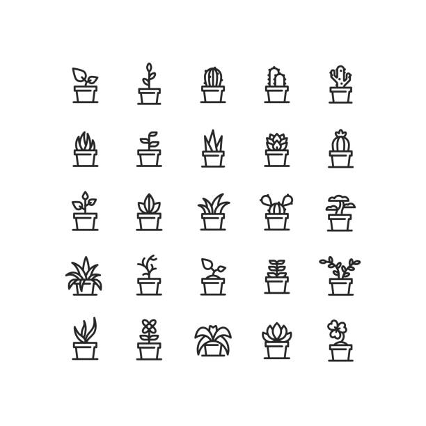 Plant In Pot Outline Icons Set of plant in clay pot outline vector icons. potted plant stock illustrations
