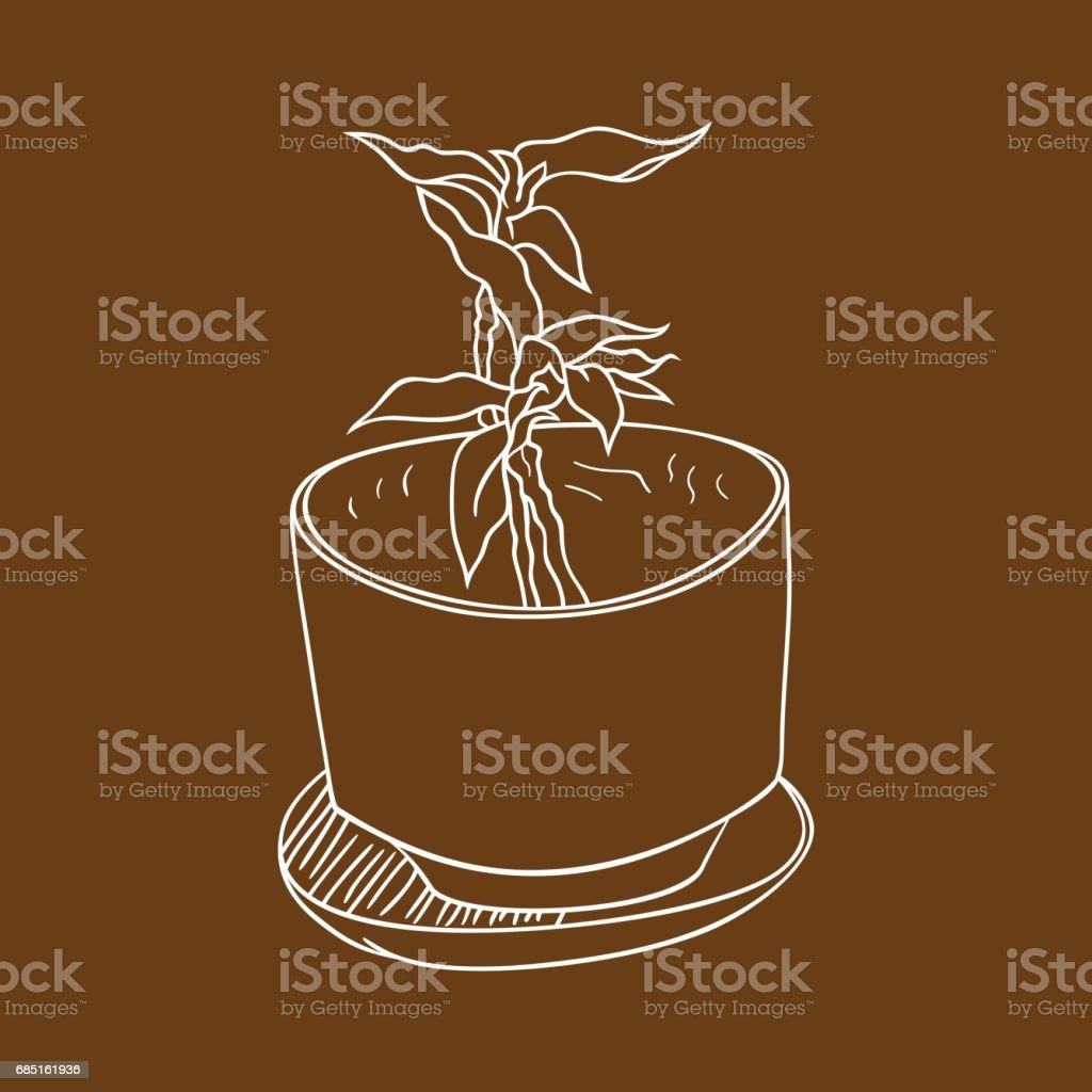 Plant in the pot royalty-free plant in the pot stock vector art & more images of bowl