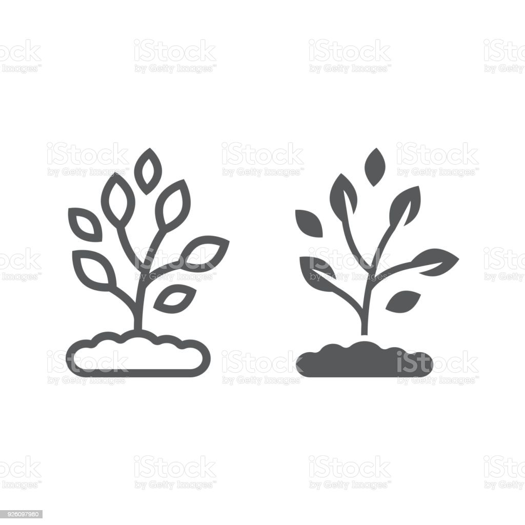 Plant line and glyph icon, farming and agriculture, ecology sign vector graphics, a linear pattern on a white background, eps 10. vector art illustration