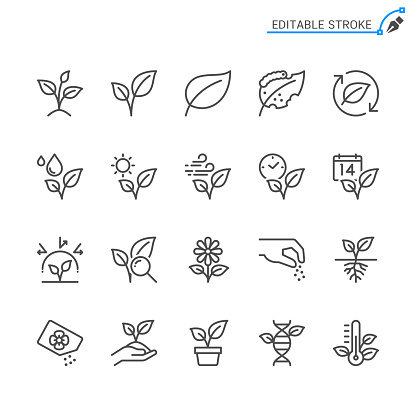 Plant line icons. Editable stroke. Pixel perfect.