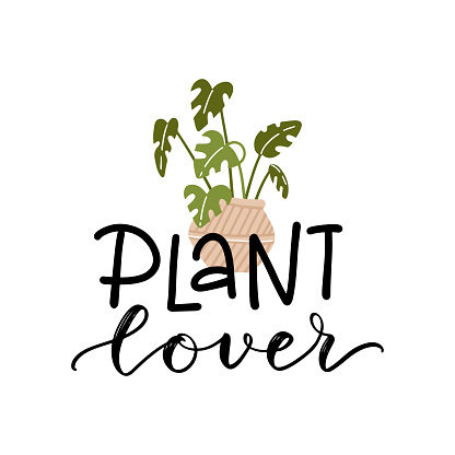 Plant lover lettering quote with a monstera houseplant in pot clipart to make cards, wall art, t-shirt iron on, bag sublimation print design. Planter decoration. Vector flat illustration